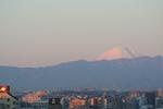 2011.1.1-富士山 001.jpg