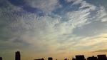20100903うろこ雲.jpg